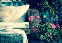Jak dbać o rośliny doniczkowe na balkonie latem?