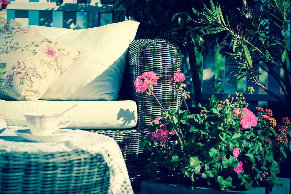 Przesadzamy kwiaty balkonowe Przesadzamy kwiaty balkonowe